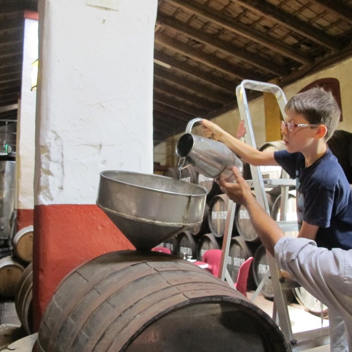 Zack pours the grape juice we pressed into a barrel.