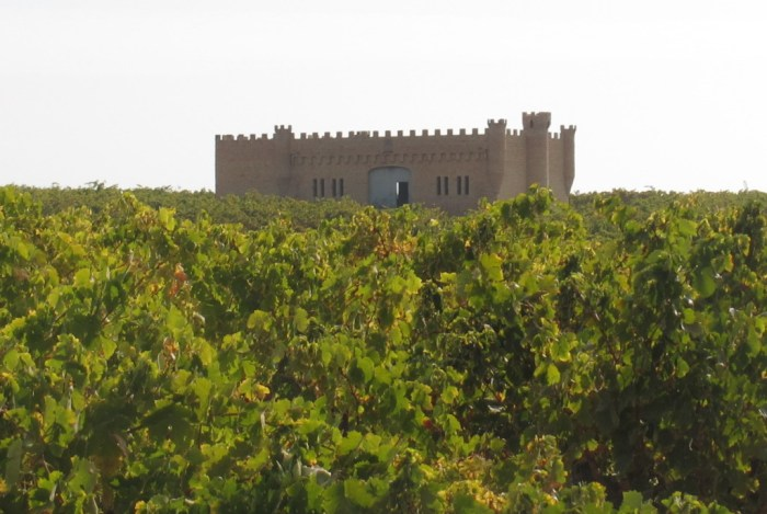 First view of the castle sitting in the middle of the vineyard.