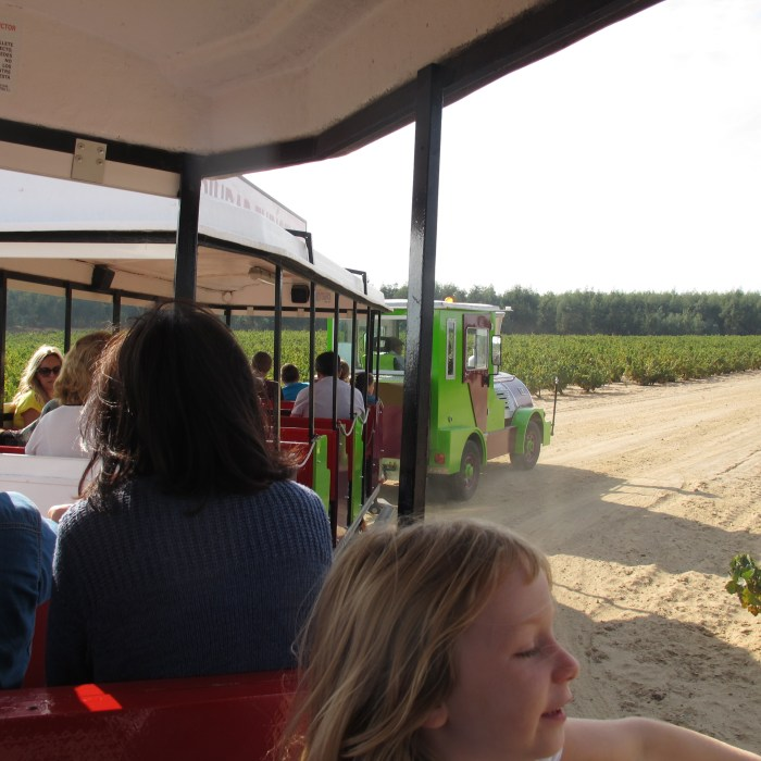 The train which carried us from Bollullos into the vineyards.