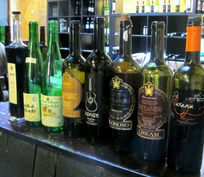 The full range of Bodegas Andrade wines - we tasted all except the Oloroso and the orange wine (far right).