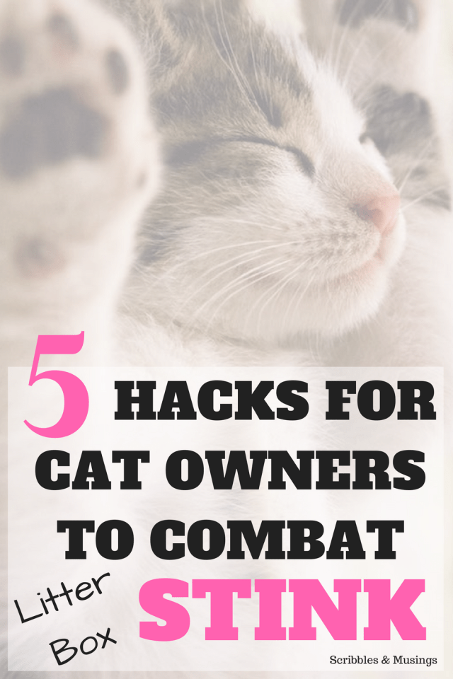 5 Litter Box Hacks - Scribbles & Musings - Do you struggle to keep your litter box smelling fresh and clean? Check out these 5 hacks for combating litter box stink.