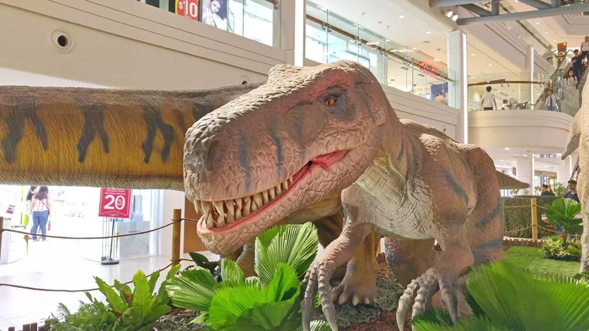 Rawr! Dinosaurs Unearthed