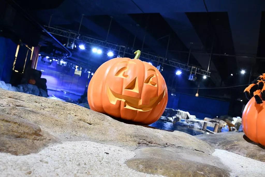 Ocean Park Halloween Fest 2017.