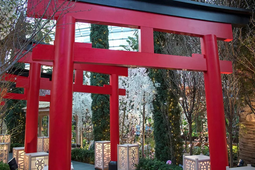 Sakura Matsuri 2020 Red Torii Gates Tunnel