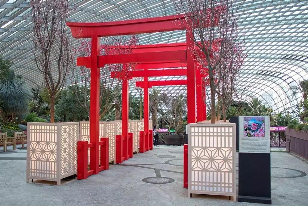 Gardens by the Bay Sakura Matsuri 2020