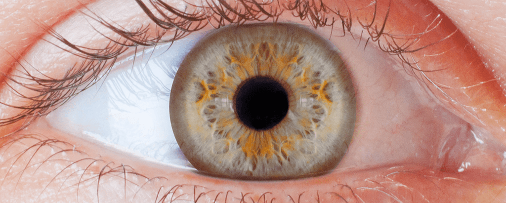 Ophthalmology Transcription