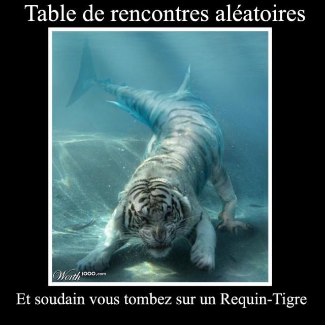 Et soudain vous tombez sur un Requin- Tigre