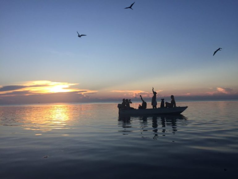 Things to do in Caye Caulker - feed fishes