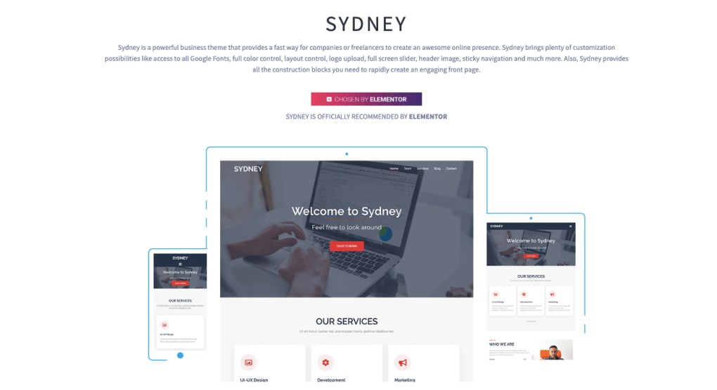 best-elementor-themes-Sydney