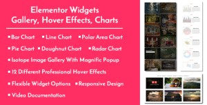 Elementor Widgets - Gallery, Hover Effects, Charts