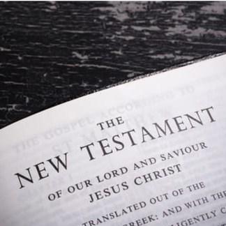 New Testament & Portions