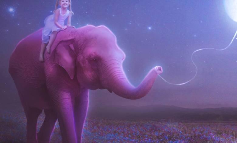 Photo of ნუ იფიქრებ ვარდისფერ სპილოზე!