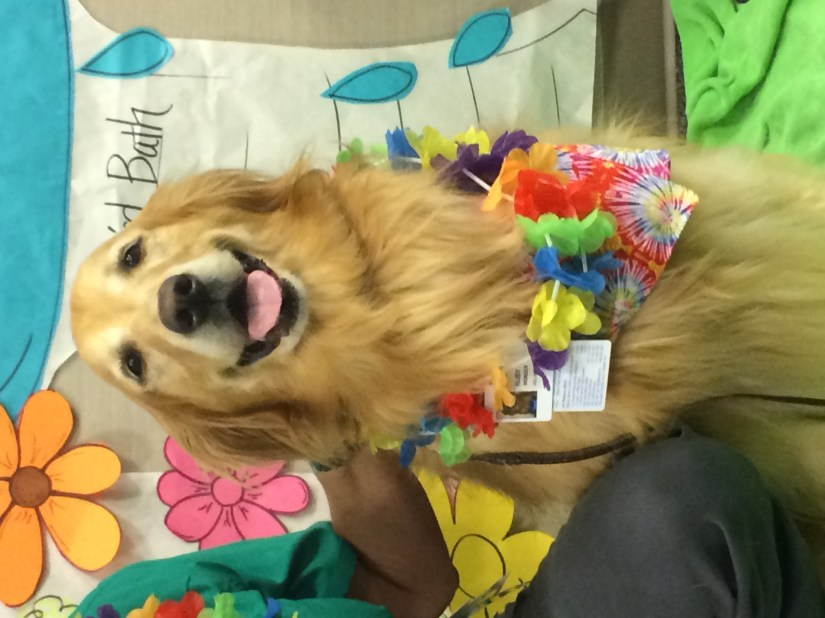 Mans best friend brings smiles to hospital patients