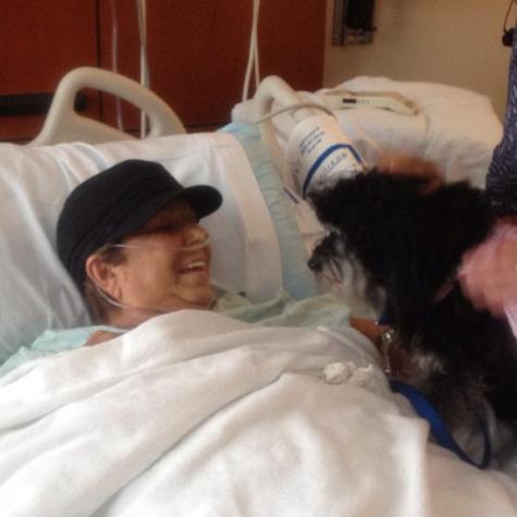 Therapy dog brings smiles