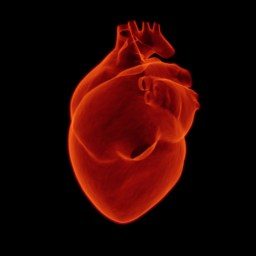 Lipoprotein(a), genetic heart condition, increases risk of heart attack