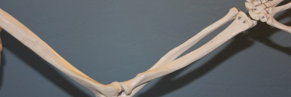 How physical therapy can help strengthen bones