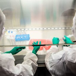 Amid global pandemic, research reminds us that hope comes in all shapes and sizes
