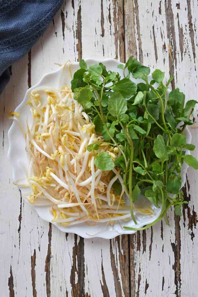 Bean Sprouts and Watercress