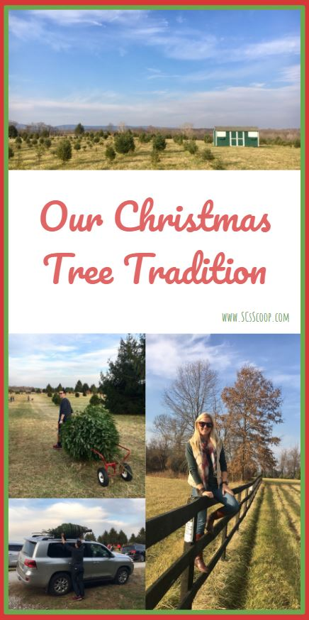 Christmas Tree Tradition and Christmas Tree Farm Visit - SCsScoop