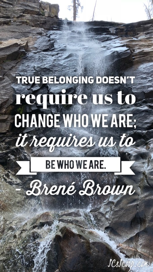 Braving the Wilderness Quotes & My Journey to True Authenticity - Brene Brown Quotes - SCsScoop.com
