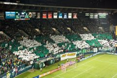 Photo Courtesy: Timbers Army Facebook Page