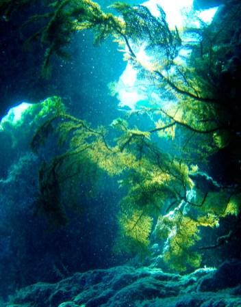 Matava - 'Naiqoro Passage'