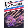 Aqua Quest'S Diving Bay Islands