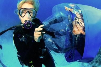 lionfish2-stuart-coves-dive-bahamas_web