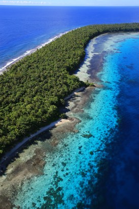 Ant Atoll is a popular Pohnpei dive site. © Simon Williams, Pohnpei Surf Club