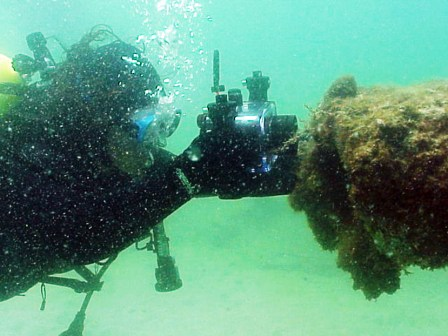 Diver photographing Regina sea life (Photo Courtesy of Florida Division of Historical Resources).