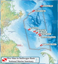 There are a number of dive sites to choose from at Stellwagen Bank National Marine Sanctuary. (Courtesy NOAA)