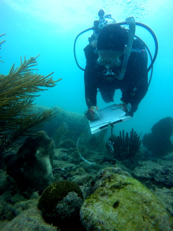Science divers note the species, size, location and recommendation for the restoration of corals in the Florida Keys National Marine Sanctuary after Hurricane Irma crossed the island chain. Credit: FORCE BLUE