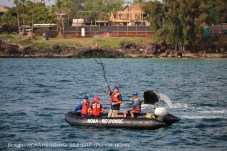 Trained responders successfully removed 750 feet of communications-type cable from an entangled whale in Hawaiian Islands Humpback Whale National Marine Sanctuary on March 12, 2017. (Photo credit: NOAA, under NOAA MMHSRP permit #18786-1)