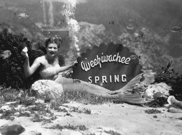 A mermaid posing with an underwater sign at Weeki Wachee Springs in 1947. Photo courtesy of State Archives of Florida, Florida Memory