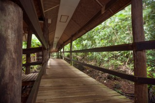 The resort's walkways blend in seamlessly with the surroundings. (Photo courtesy of Tawali Resort).