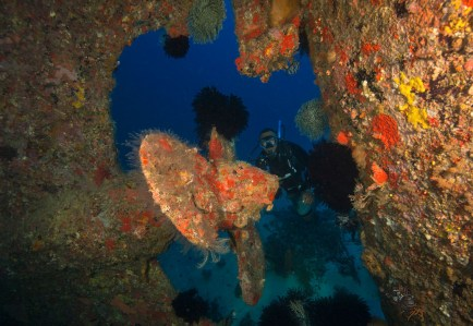 Semele Federesen wreck (photo credit: Jayne Jenkins)