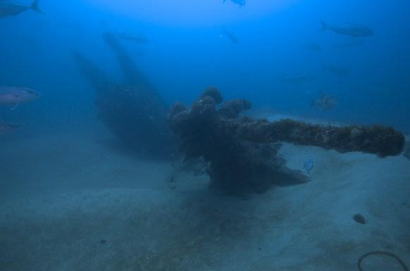 U-701