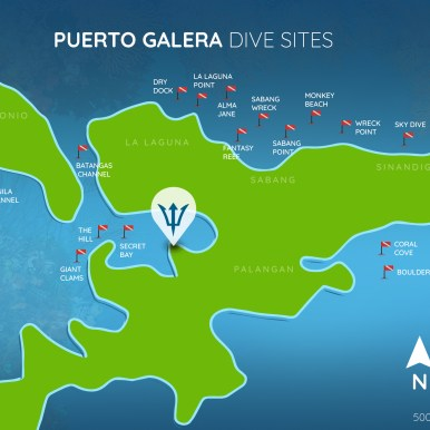 Over 30 dive sites in the area just minutes away. (Courtesy Edgewater Dive and Spa Resort)