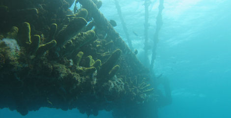 dive_sites_the_antilla_wreck-1