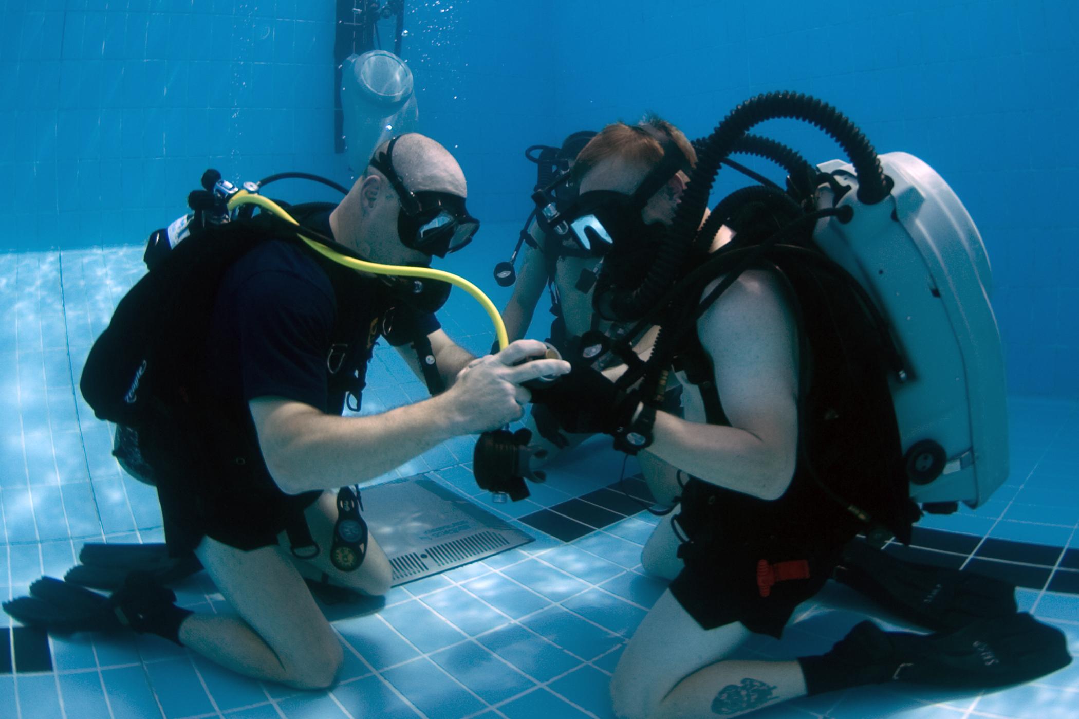 Padi Vs Naui Types Of Scuba Certifications Scuba Diving Lovers
