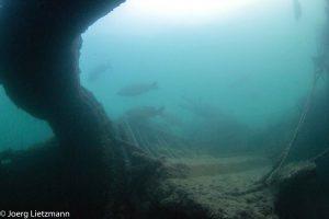 Bunkeranlagen-2