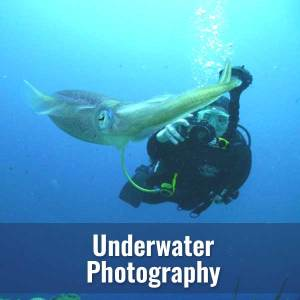 U/W Photography @ Diver's World | Erie | Pennsylvania | United States