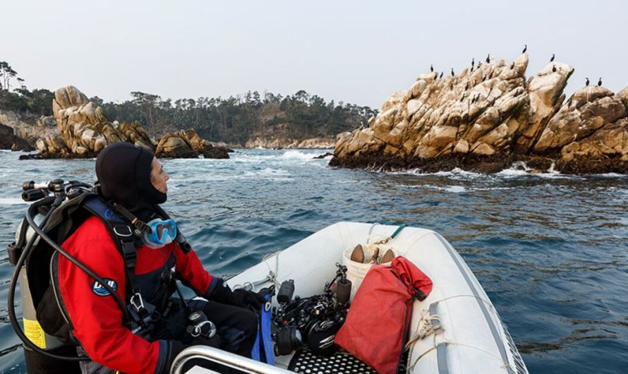 How to Dive From Your Own Boat on California's Monterey Peninsula