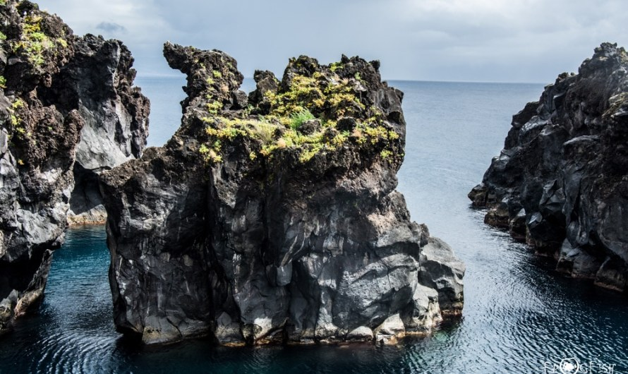 Wining and Diving – The Azores