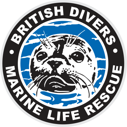 Trapped seal rescued from death in race against tide