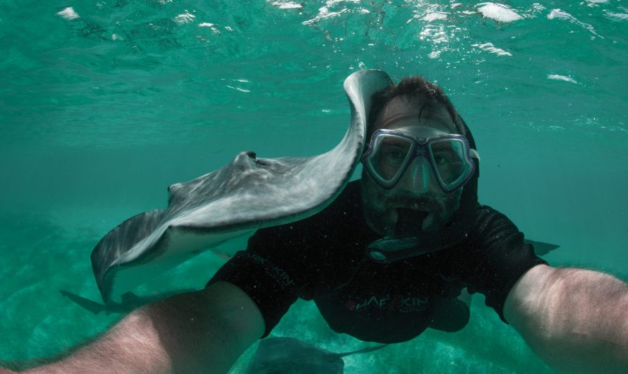 BLUE EARTH – Future Frogmen Podcast Series -The Path To A Smaller Carbon Footprint