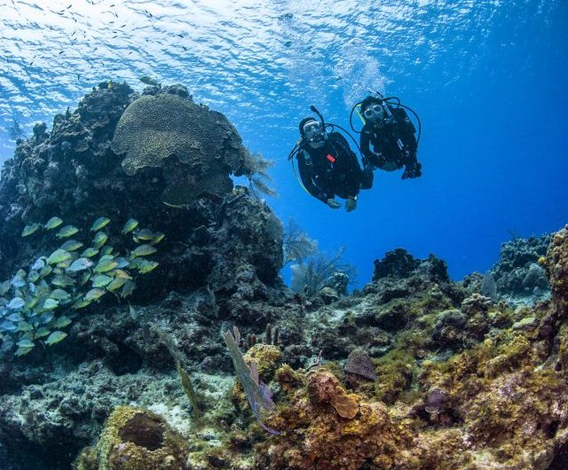 Ways to Tackle Obstacles on Your Diving Journey
