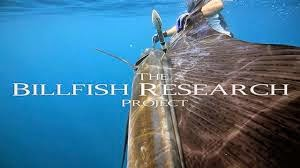 Billfish research Project