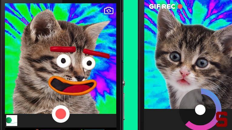 Giphy Cam | Come creare simpatiche gif da condividere su WhatsApp, Telegram, Twitter…
