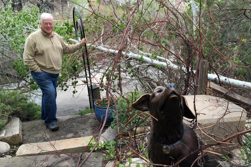 Beavers attack Loveland Sculpture Garden